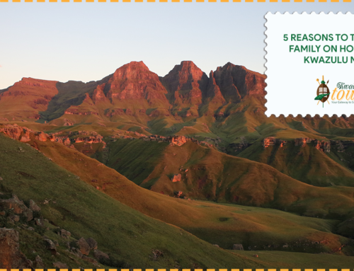 5 Reasons to Take Your Family on Holiday to Kwa-Zulu Natal